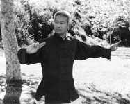 The Power of Crane Chi Gong