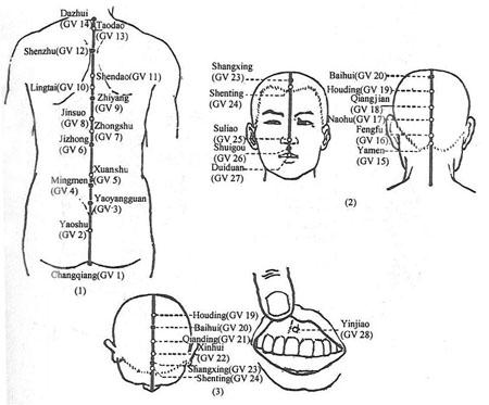 diagram of acupuncture meridians diagram of immune system