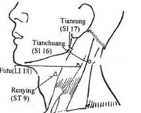Acupuncture com acupuncture points small intestine si 16